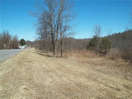 Photo for 0 Route 21 N Road